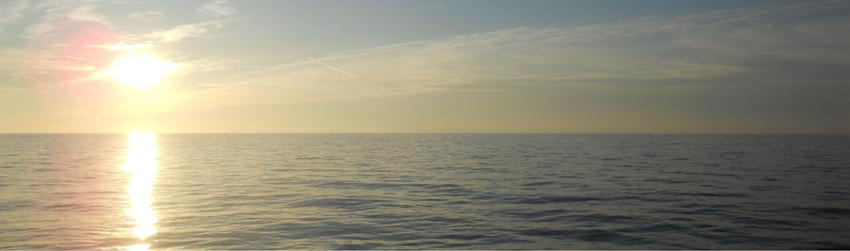 seascape marine